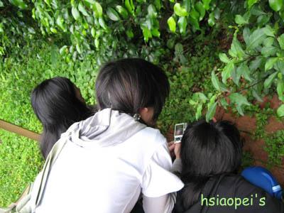 090511在台北國際藝術村9--埋牙拍照存證.jpg