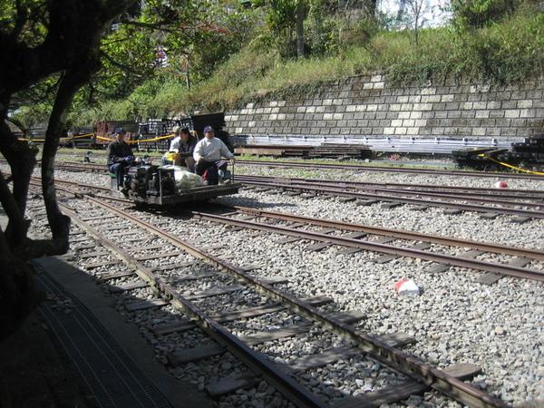 傳來轟隆轟隆的聲響,以為是火車要來,結果是它...