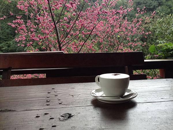 在碧絡角小憩喝咖啡