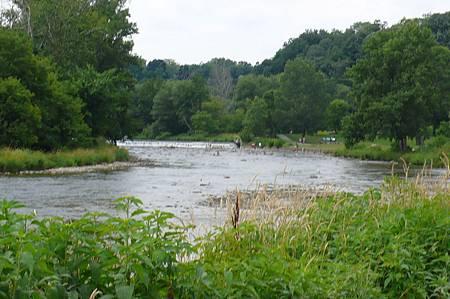 烤肉的河畔(Humber River)