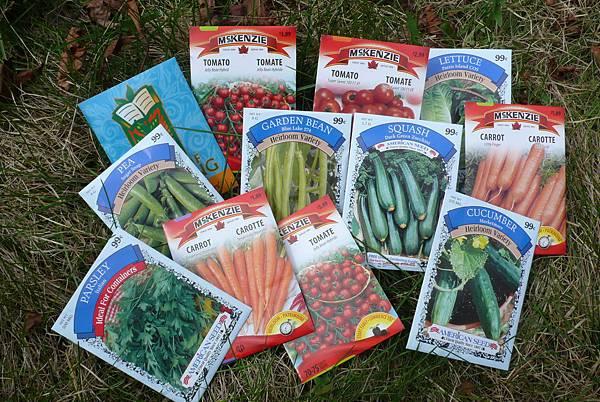 準備播種的種子