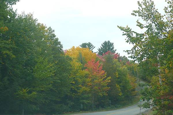 秋天的沿途風光