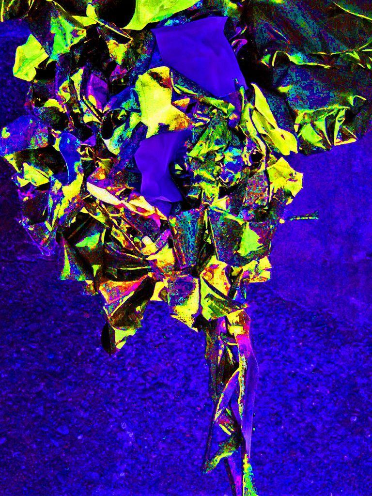 外星植物4jpg.jpg