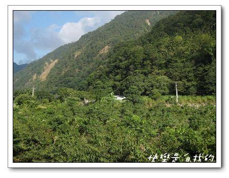 綠山.jpg