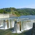 早上車的尿尿點:鯉魚潭水庫