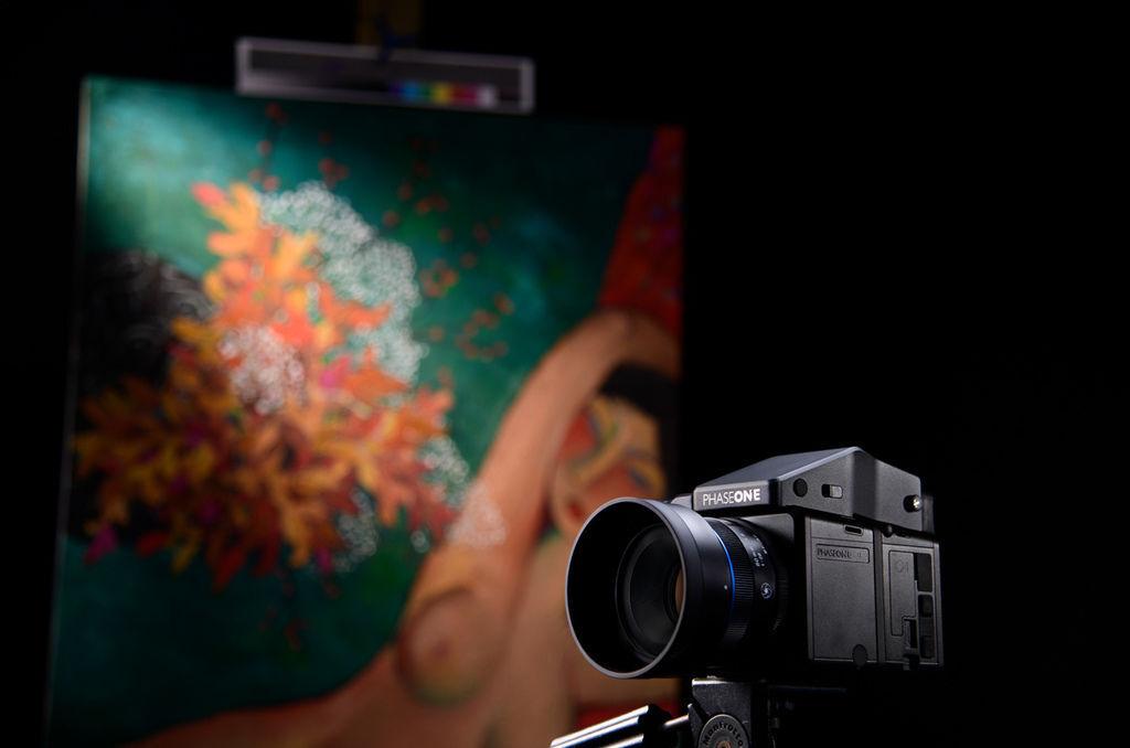 畫作+相機+鏡頭光暈.jpg