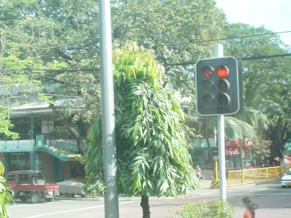 馬路上的紅綠燈