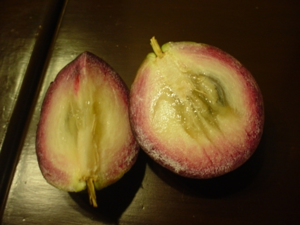 這就是星蘋果的果肉!有點像山竺和荔枝~紅色的果肉又有點像紅龍果~但星蘋果較香甜好吃~自備瑞士刀派上用場~