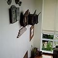 渡假村樓梯間的牆壁裝飾~真是太美了~加上採光好~視覺很舒服!