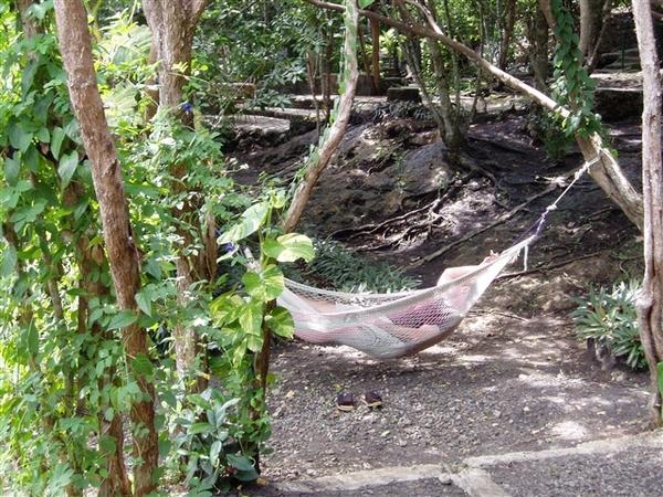 發現一個外國男人在吊床上睡得很熟~羨慕!