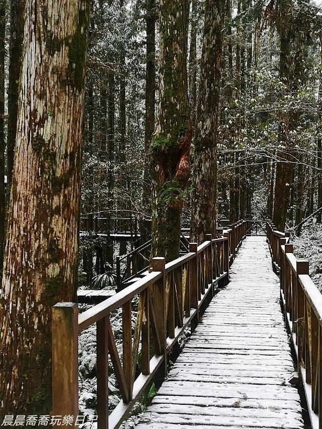 賞雪景點/明池/太平山