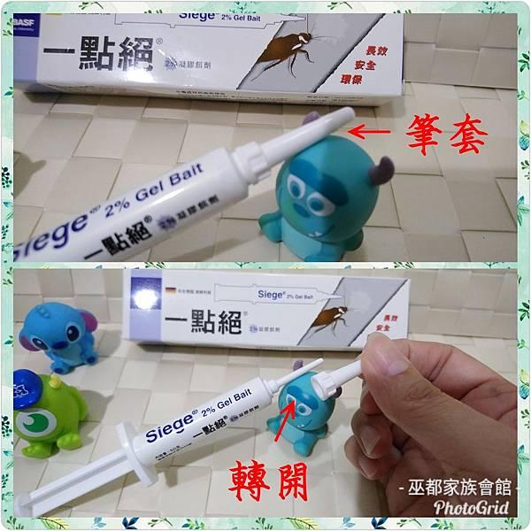 PhotoGrid_1534846108879.jpg