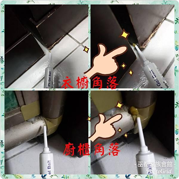 PhotoGrid_1534847149767.jpg
