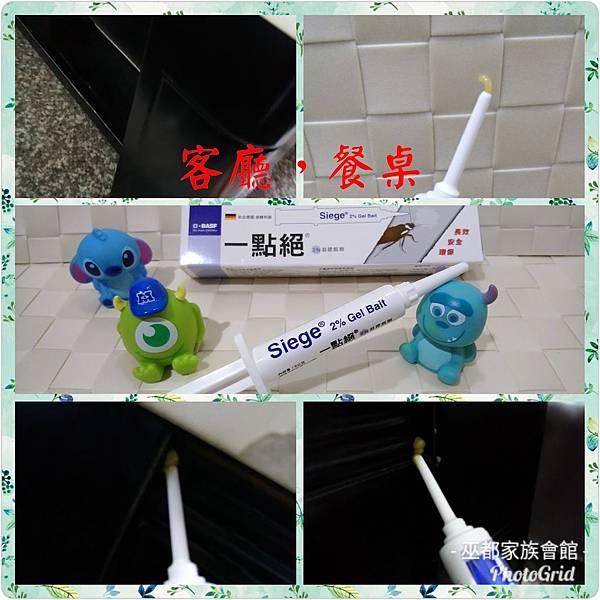 PhotoGrid_1534847525497.jpg