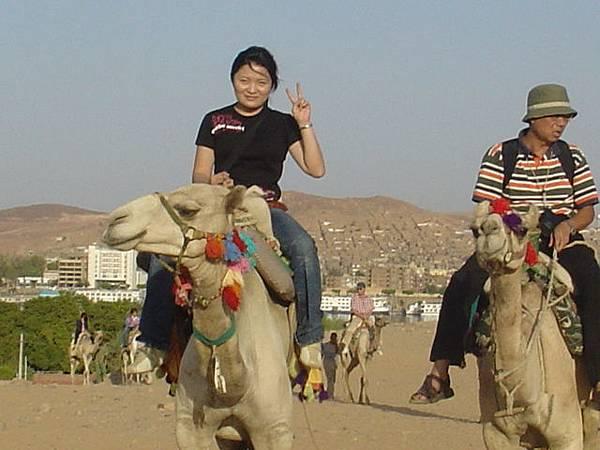 騎駱駝的感覺---恐怖哦