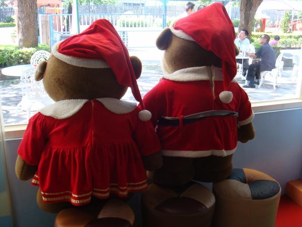 哈比 哈妮 已經等著過聖誕了~