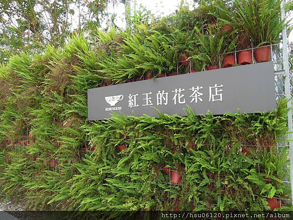 2-廖鄉長紅茶故事館 (43)