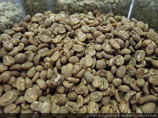 9品皇咖啡觀光工廠 (24)