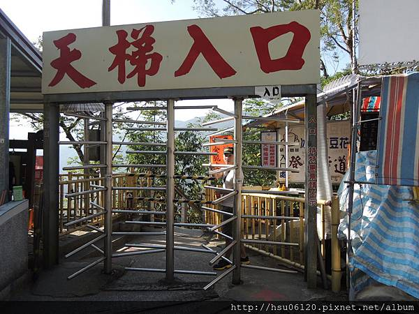 2竹山天梯 (4)