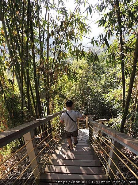 2竹山天梯 (6)