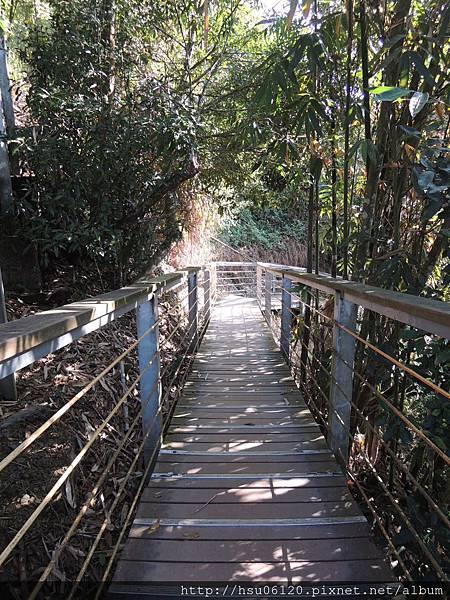 2竹山天梯 (8)