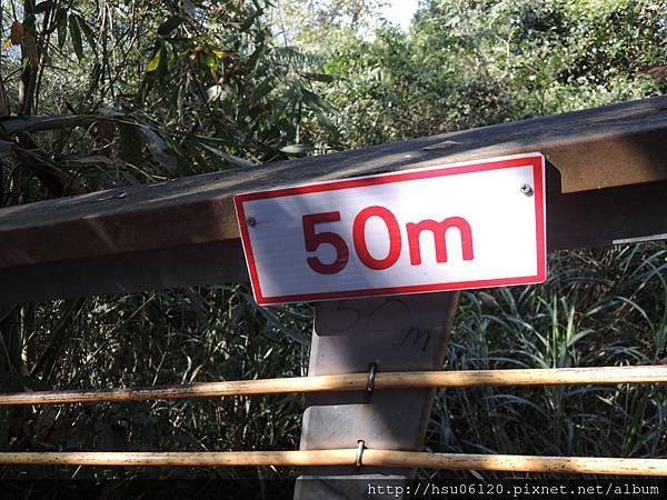 2竹山天梯 (9)