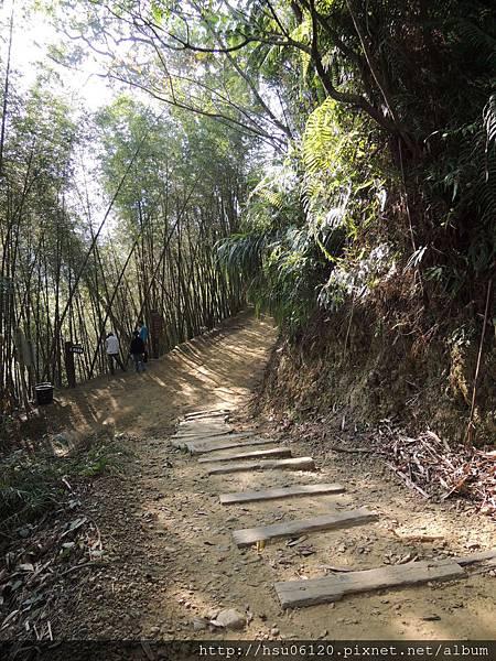 2竹山天梯 (13)
