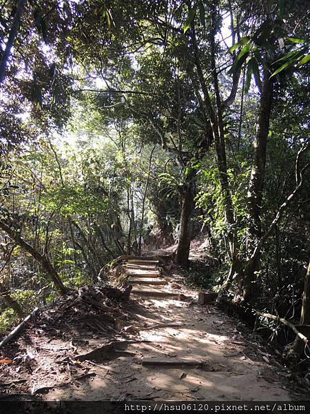 2竹山天梯 (12)