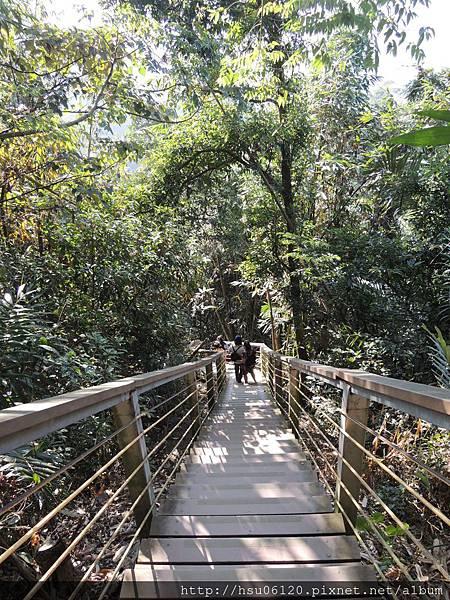 2竹山天梯 (10)