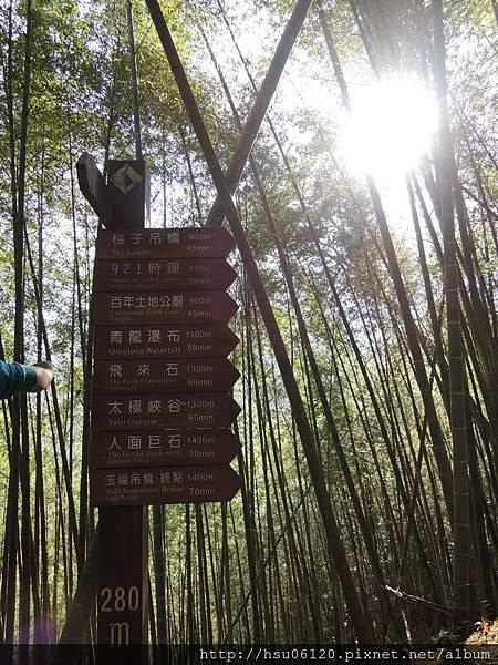 2竹山天梯 (14)