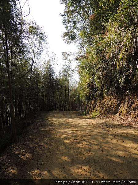 2竹山天梯 (15)