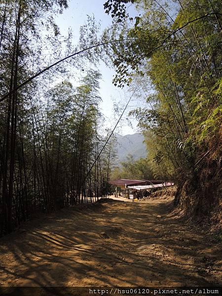 2竹山天梯 (16)