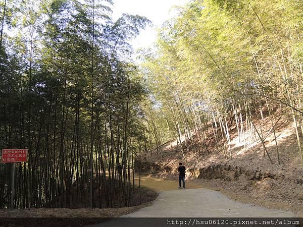 2竹山天梯 (20)