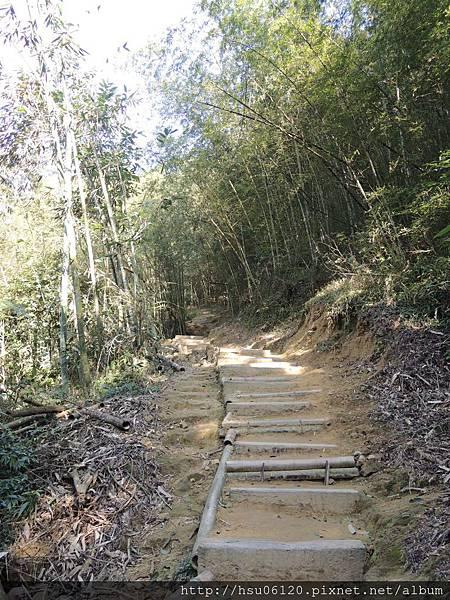 2竹山天梯 (26)