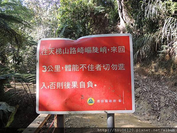 2竹山天梯 (23)