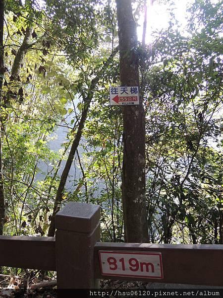2竹山天梯 (28)