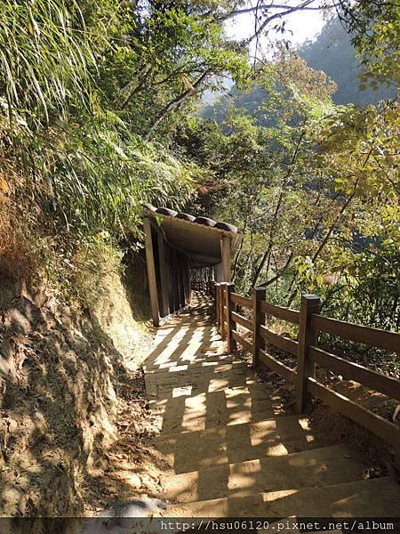 2竹山天梯 (29)