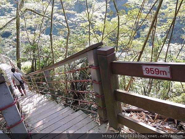2竹山天梯 (32)