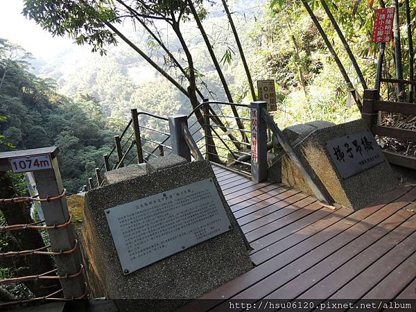 2竹山天梯 (37)