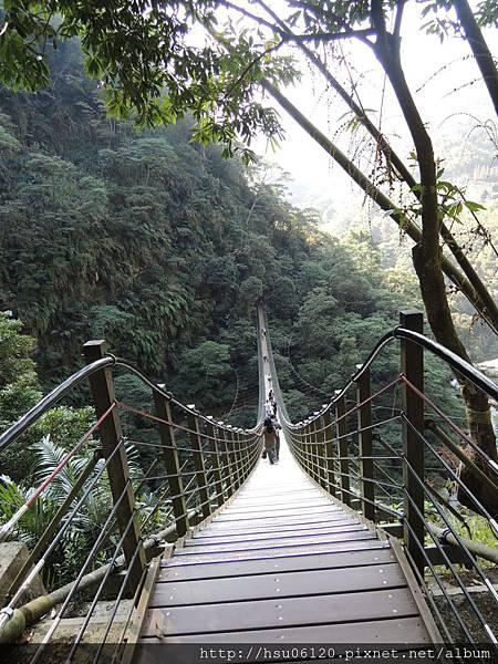 2竹山天梯 (38)