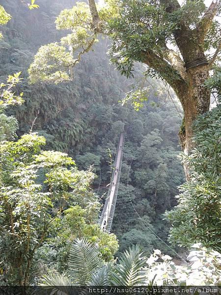 2竹山天梯 (34)