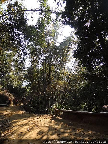 2竹山天梯 (59)