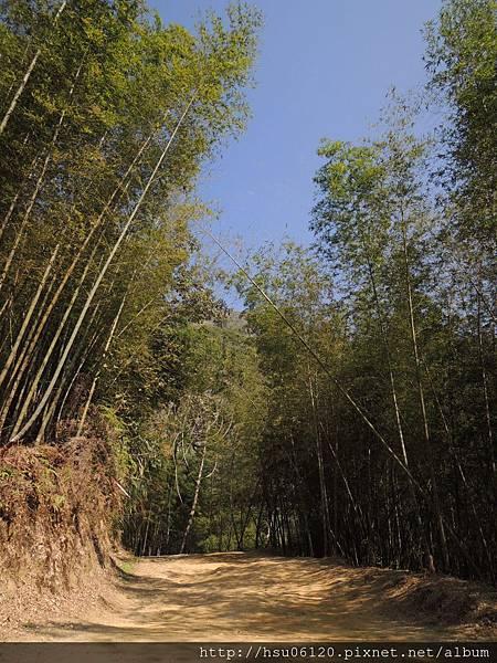 2竹山天梯 (75)