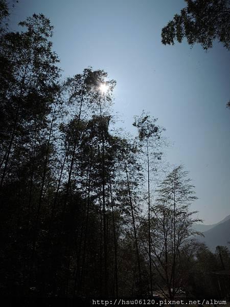 2竹山天梯 (76)