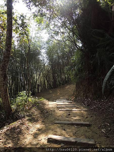 2竹山天梯 (83)