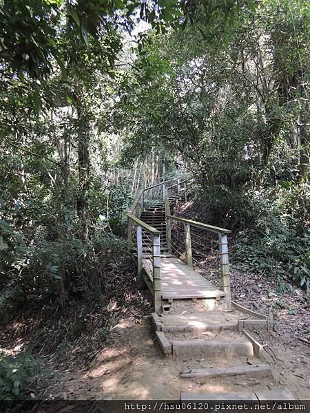 2竹山天梯 (84)