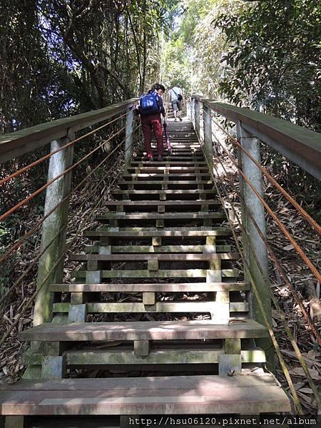2竹山天梯 (87)