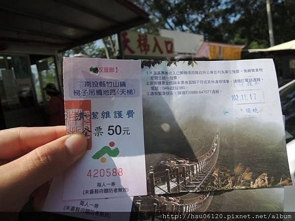2竹山天梯 (88)