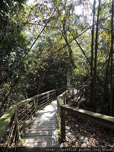 2竹山天梯 (86)