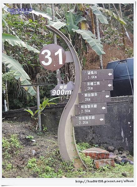 10碧湖山觀光茶園 (1)-1